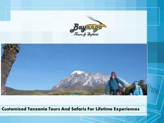 Customized Tanzania Tours And Safaris For Lifetime Experienc