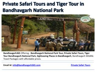 Private Safari Tours and Tiger Tour in Bandhavgarh National