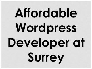 Affordable Wordpress Developer at Surrey