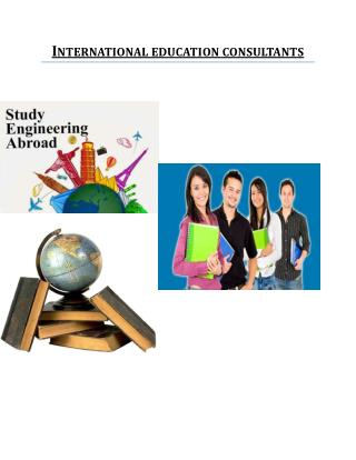 international education consultants