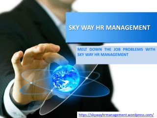 Skyway HR Managment