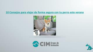 CIM- consejos para viajar de forma segura con
