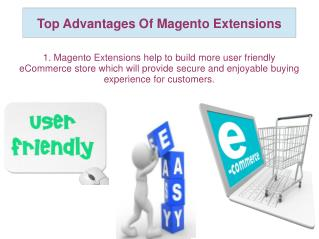 Top Advantages Of Magento Extensions