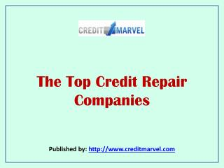 The Top Credit Repair Companies