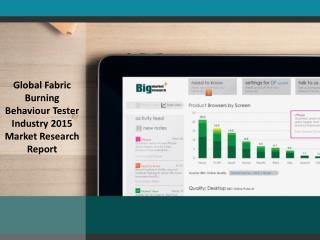 2015 Global Fabric Burning Behaviour Tester Industry