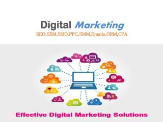Internet Marketing Company in Chandigarh