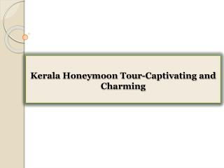 Kerala Honeymoon Tour-Captivating and Charming