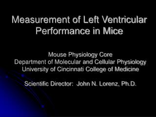 Measurement of Left Ventricular Performance in Mice