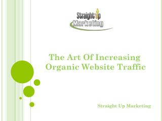 The Art Of Increasing Organic Website Traffic