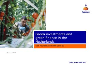Green investments and   green finance in the Netherlands