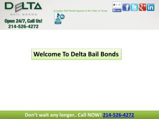 Collin county bail bonds
