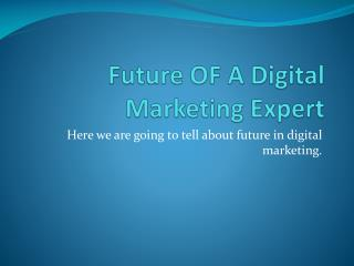 Future Of Digital Marketing Experts