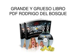 Grande y Grueso libro pdf Rodrigo del Bosque