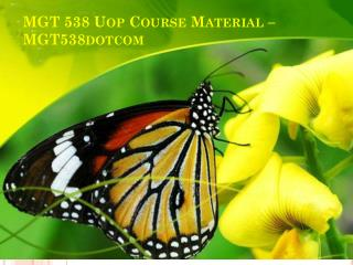 MGT 538 UOP Course Material - mgt538dotcom