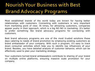 Brand Advocacy Programs