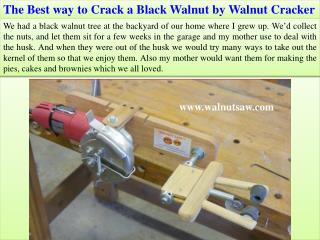 The Best way to Crack a Black Walnut by Walnut Cracker