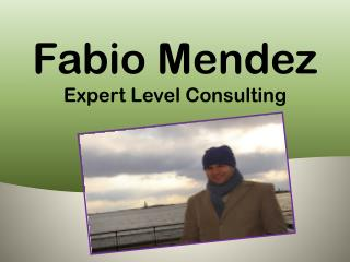 Fabio Mendez Expert Level Consulting