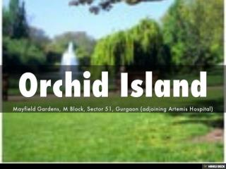 Orchid Island