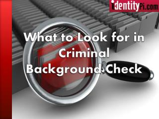 What to Look for in Criminal Background Check