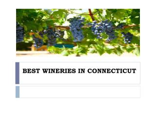 BEST WINERIES IN CONNECTICUT