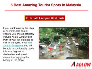 5 best amazing tourist spots in Malaysia