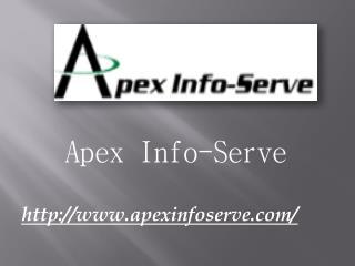 Website Marketing Agency - Apex Info-Serve