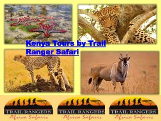 Kenya Tours by Trail Ranger Safari