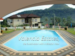 Valencia Estates, the Subdivision with a Blissful View