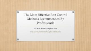 The Most Effective Pest Control Methods Recommended By Professionals