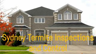 Sydney Termite Inspections and Control