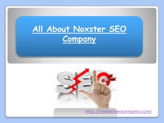 All About Noxster SEO Company