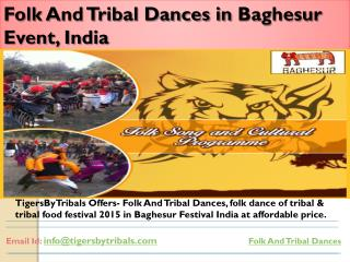 Folk And Tribal Dances at Baghesur Event