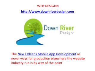 Software  New Orleans Mobile App  Application Development