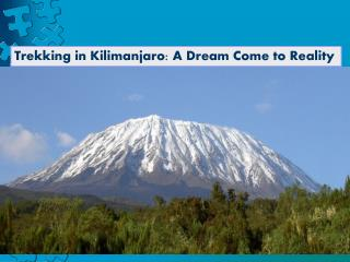 Trekking in Kilimanjaro A Dream Come to Reality