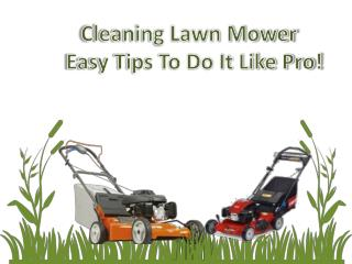 Cleaning Lawn Mower – Easy Tips To Do It Like Pro!