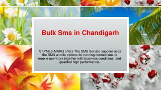 Cheapest Bulk Sms Provider in Chandigarh Skynes-MarQ