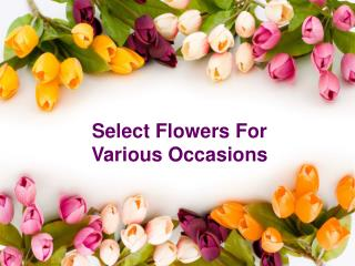 Select Flowers For Various Occasions