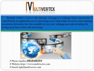 Web Designing Company - Multivertex Technology Pvt. Ltd.
