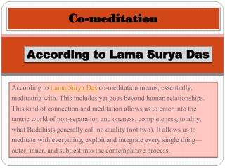 Co-meditation According to Lama Surya Das