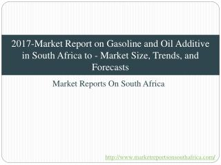 2017-Market Report on Gasoline and Oil Additive in South Africa