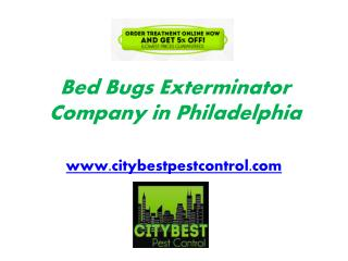 Quality Bed Bugs Exterminator Services in Philadelphia by City Best Pest Control
