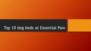 Top 10 dog beds at Essential Paw
