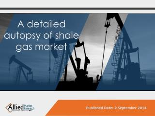 Global Shale Gas Market Technology, Application, Analysis, Opportunities, Segmentation and Forecast 2013 - 2020