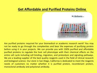 Get Affordable and Purified Proteins Online