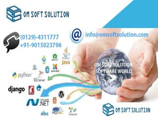Software Development company in Faridabad