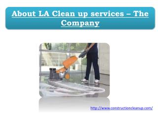 About LA Clean up services – The Company