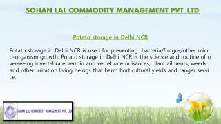 Potato Storage in Delhi NCR & Potato Storage in India