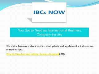 You Got to Need an International Business Company Service