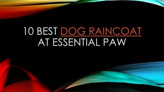 10 best dog raincoat at Essential Paw