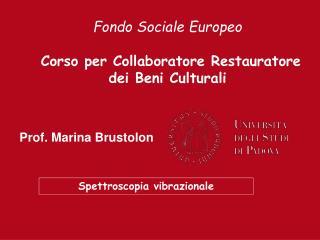 Prof. Marina Brustolon